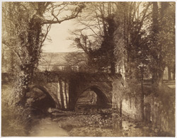 The Old Bridge At Fountains Abbey